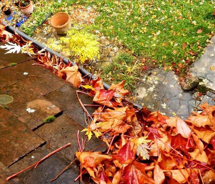 Water Damage Clogged Gutters Cause Water Damage During DeKalb Storms