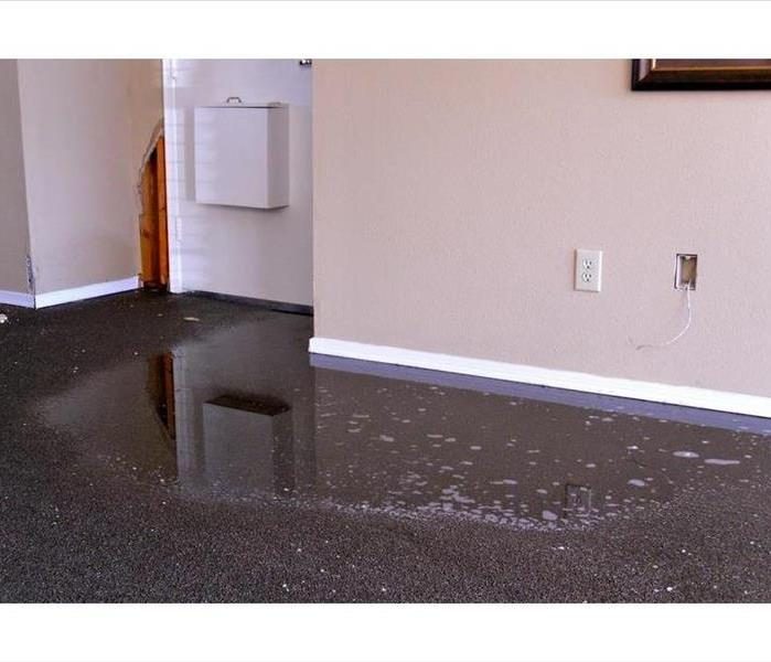 Standing water on carpet