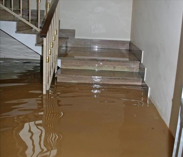 Why SERVPRO How Do You Flood Proof a House?