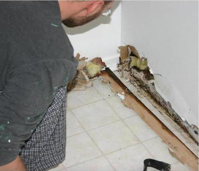 Mold Remediation How to Remediate Microbial Contamination Caused By Mold Damage in DeKalb Homes