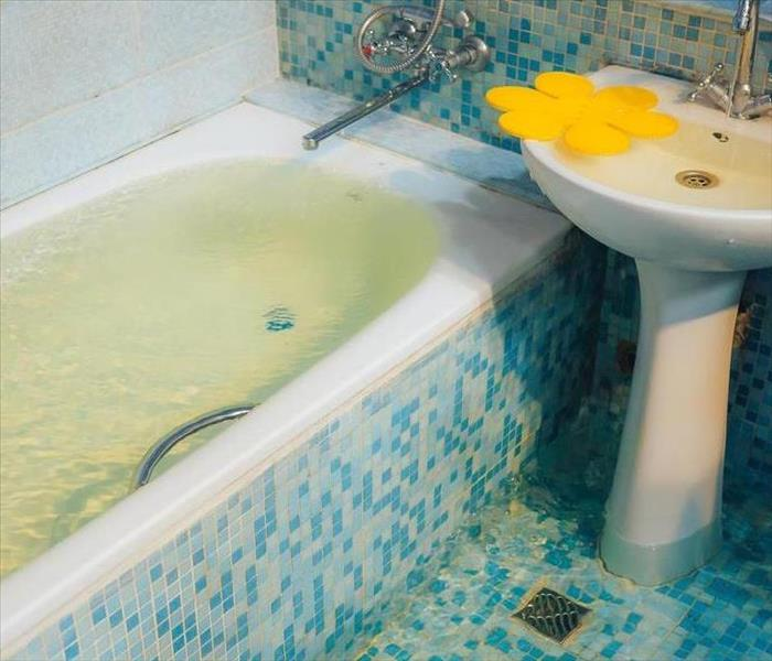 Water Damage How To Handle a Sewer Backup in Your Home