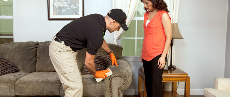 Dunwoody, GA carpet upholstery cleaning