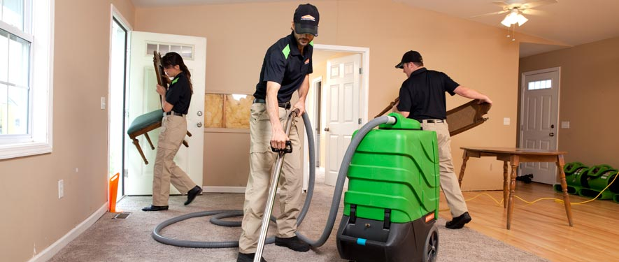 Dunwoody, GA cleaning services